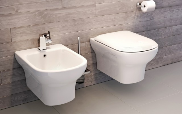 Pura Grace Wall Hung WC and Bidet